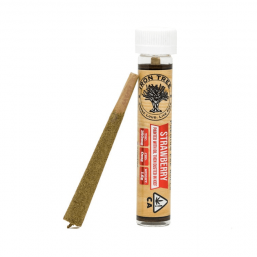 Strawberry | Premium Pre-Roll