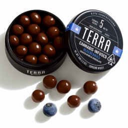 Terra Blueberry Bites 100mg